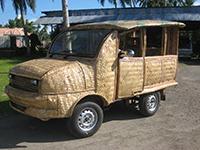 ¿Es el bambú el futuro del automóvil? Renovable, limpio y más barato
