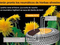 Continental desarrolla su primer neumático fabricado con diente de león