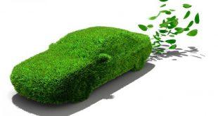 renting y medio ambiente