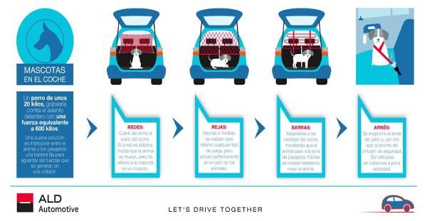 ALD Automotive viajes en coche con mascota