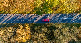 puesta a punto coche otoño