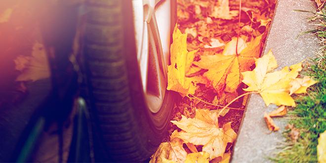 Conducción segura en otoño