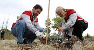 Seat contribuye a la reforestación del Delta del Llobregat con 414 árboles