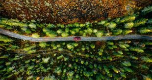 ALD Automotive recibe el certificado ISO 1400 por su compromiso medioambiental