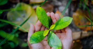 dia-mundial-medio-ambiente-movilidad-sostenible
