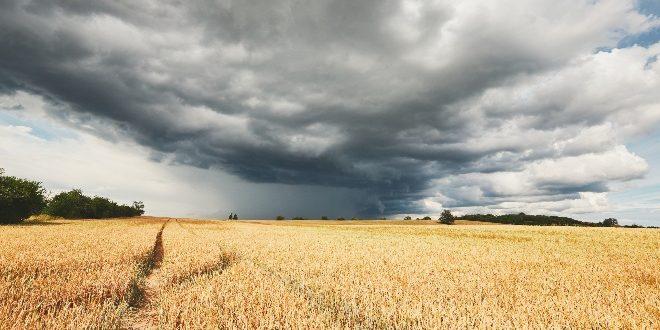 consejos para conducir seguro tormenta de verano