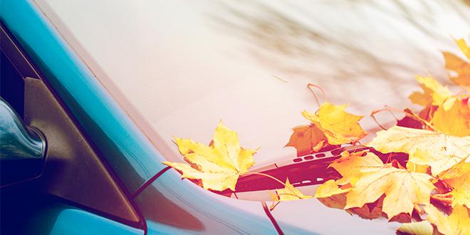 El mantenimiento de los vehículos con el comienzo del otoño